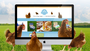 New Havensfield Eggs website hatches